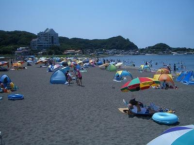 館山の海水浴場や九重のハス