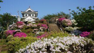 城山公園のつつじ-2014年